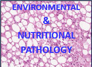 PPTs.h9 Robbins Pathology Complete In Powerpoint Lectures